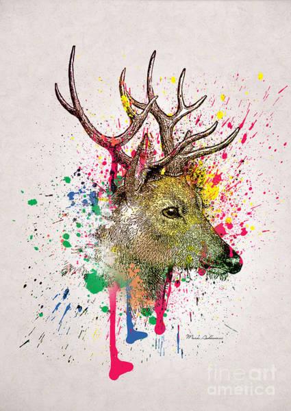 Deer Digital Art - Deer  by Mark Ashkenazi