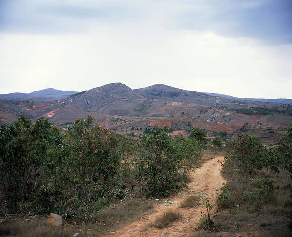Madagascar Photograph - Deforestation by Sinclair Stammers/science Photo Library
