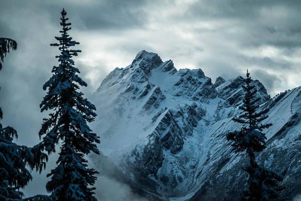Treeline Photograph - Del Campo Peak by Ryan McGinnis