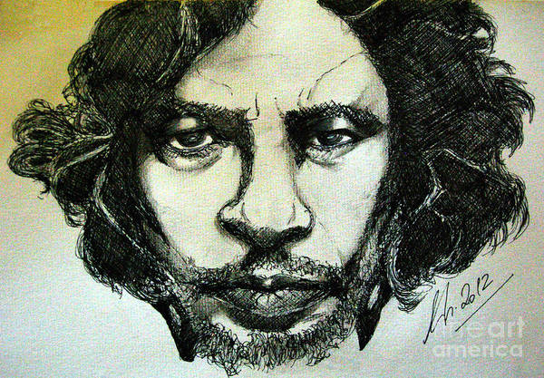 Drawing - Del Toro by Nicole Philippi
