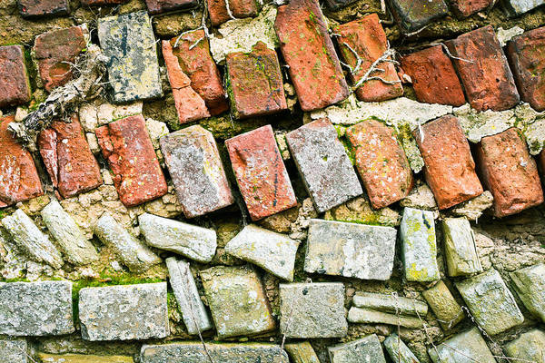 Cement Photograph - Delapidated Wall by Tom Gowanlock