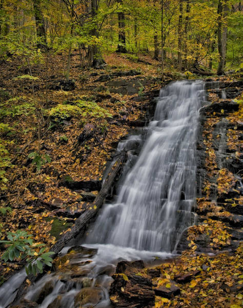 Photograph - Delaware Water Gap In The Fall by Susan Candelario