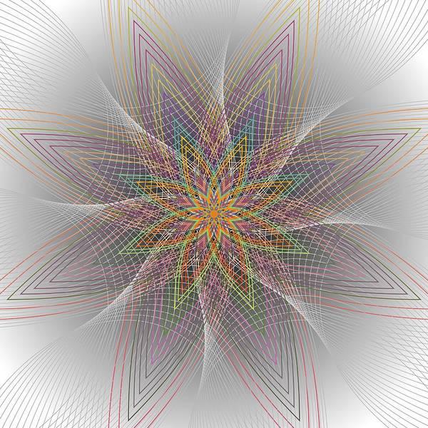 Digital Art - Delicata 2012 by Kathryn Strick