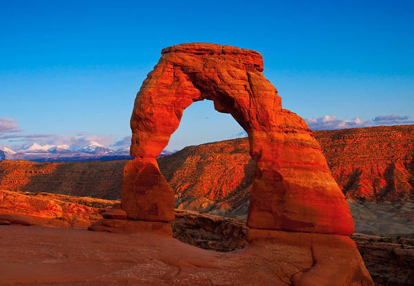 Photograph - Delicate Arch by Darren Bradley