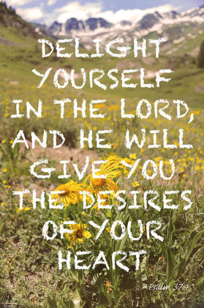 Photograph - Delight Yourself In The Lord by Aaron Spong