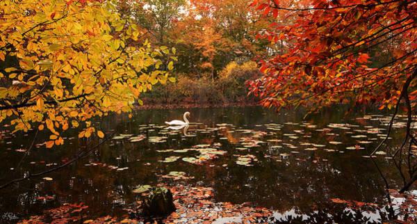 Autumn In New England Photograph - Delightful Autumn by Lourry Legarde