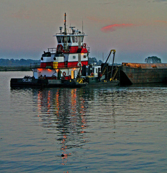 Photograph - Delta Work Horse At Sundown by Joseph Coulombe