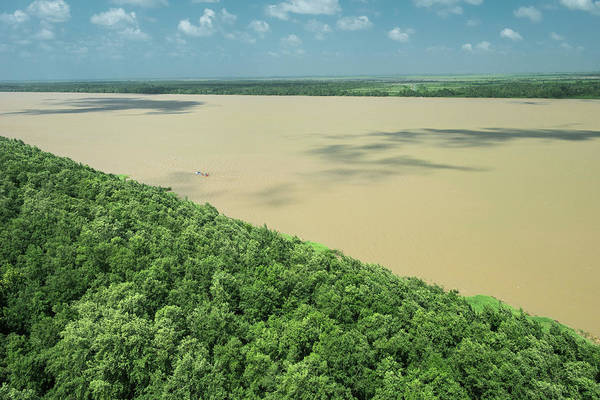 Braids Wall Art - Photograph - Demerara River, Guyana by Pete Oxford