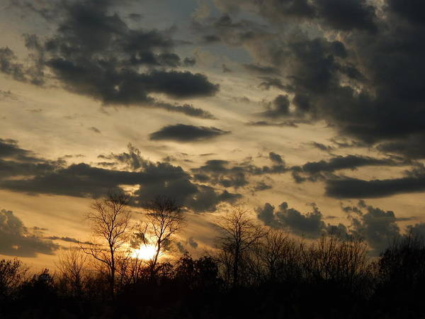 Photograph - Demon Sky by Wild Thing