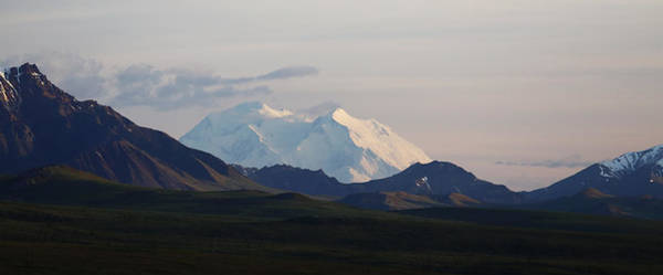 Photograph - Denali At Night by Jean Clark
