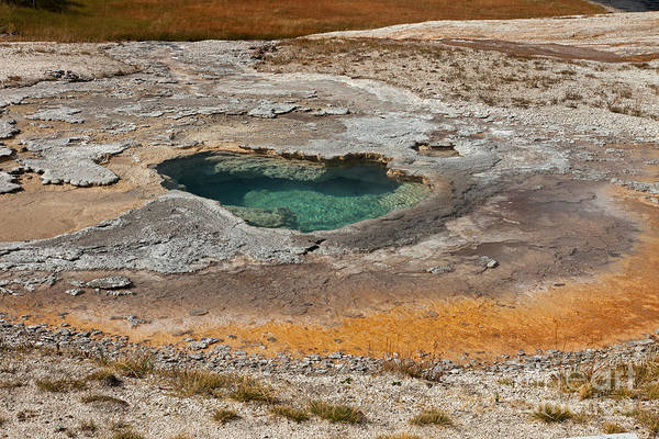 Photograph - Depression Geyser Upper Geyser Basin by Fred Stearns