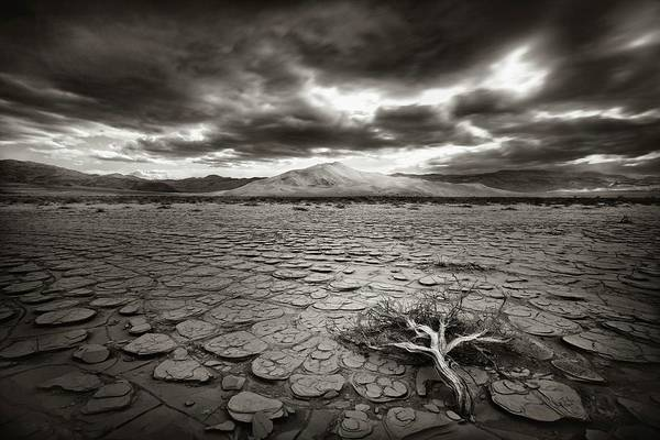 Dry Photograph - Deprivation by Mirko Vecernik
