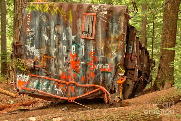 Train Derailment Photograph - Derailed In The Woods by Adam Jewell
