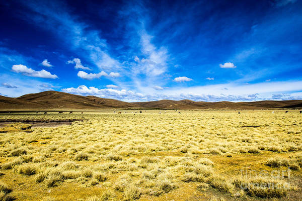 Wall Art - Photograph - Desert And Mountain Over Blue Sky by Mariusz Prusaczyk
