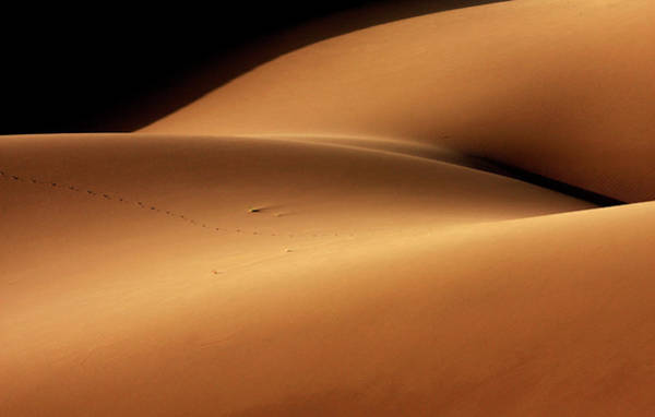 Wall Art - Photograph - Desert And The Human Torso by Ebrahim Bakhtari Bonab