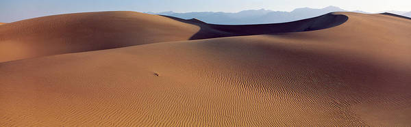 Windswept Photograph - Desert Death Valley Ca Usa by Panoramic Images