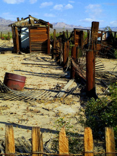 Desolation Photograph - Desert Desolation by Randall Weidner