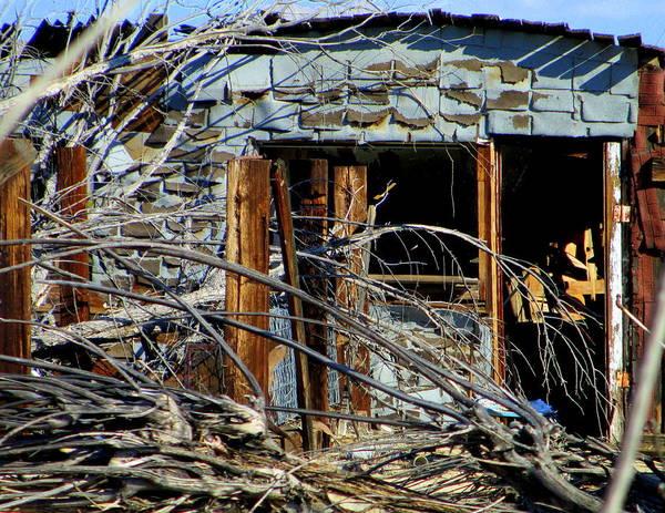 Desolation Photograph - Desert Destruction by Randall Weidner