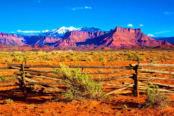 Photograph - Desert Fenceline by Rick Wicker
