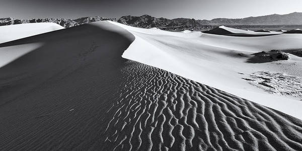 Wall Art - Photograph - Desert Flow by Patrick Downey