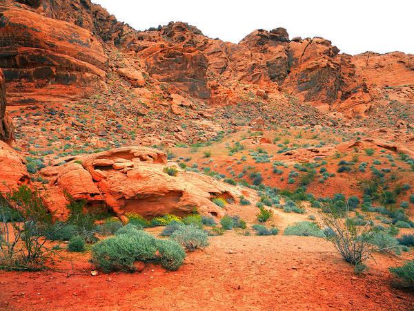 Photograph - Desert Hiking Among The Sandstones by Frank Wilson