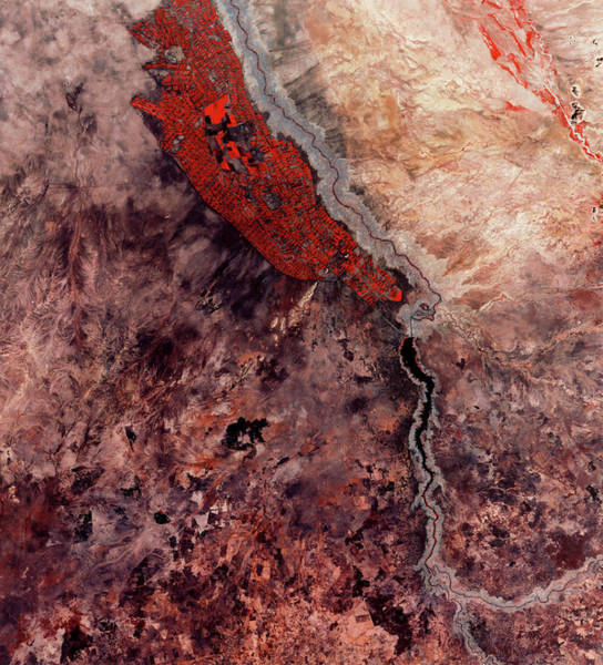 Wall Art - Photograph - Desert Irrigation by Mda Information Systems/science Photo Library