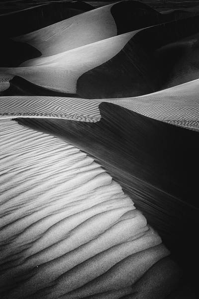 Wall Art - Photograph - Desert Light by Rami Al Adwan