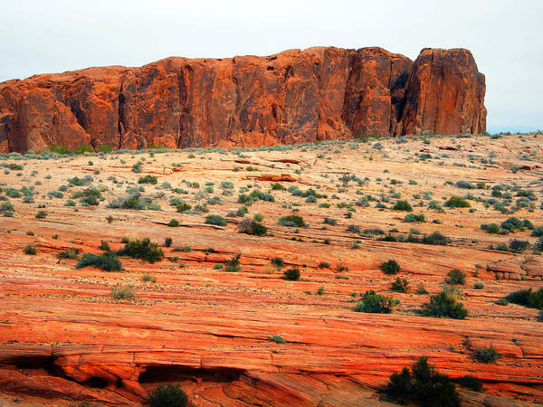 Photograph - Desert Monolith by Frank Wilson