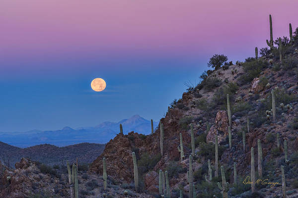 Photograph - Desert Moonset by Dan McGeorge