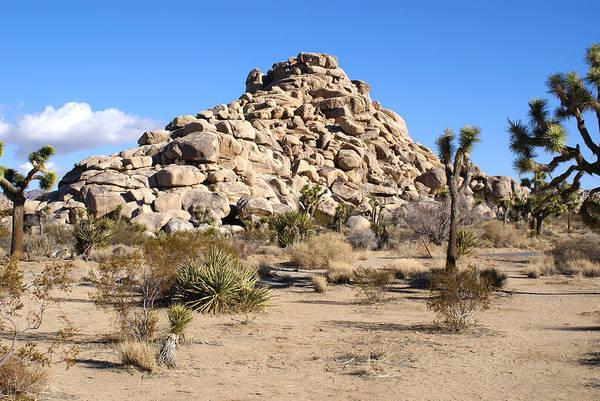 Mound Digital Art - Desert Mound by Barbara Snyder
