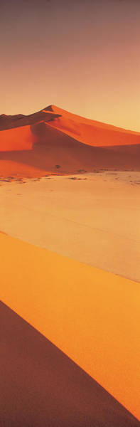 Windswept Photograph - Desert Namibia by Panoramic Images