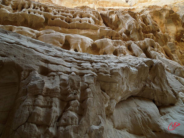 Photograph - Desert Natural Formations Sinay Egypt by Colette V Hera  Guggenheim