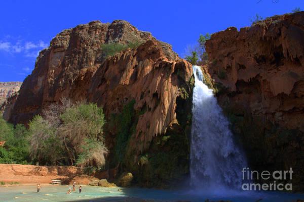Photograph - Desert Oasis by Jim McCain