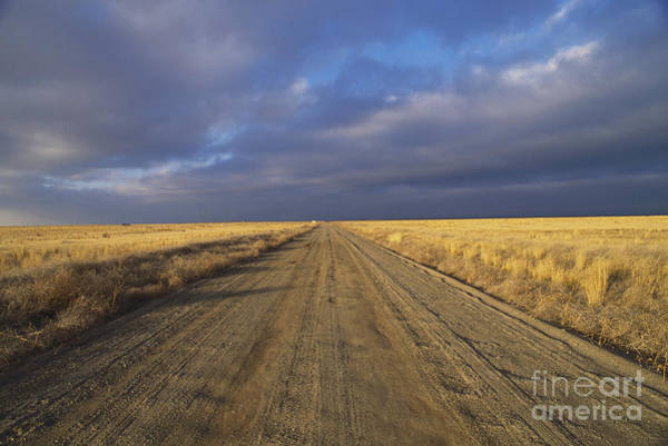 Photograph - Desert Road Idaho by William H Mullins