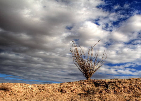 Photograph - Desert Skys Number One by Jeremy McKay