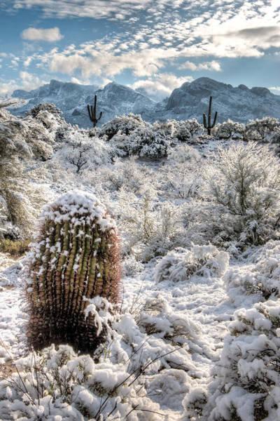 Desert Snow Art Print