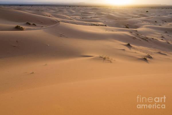 Wall Art - Photograph - Desert Sunrise by Yuri San