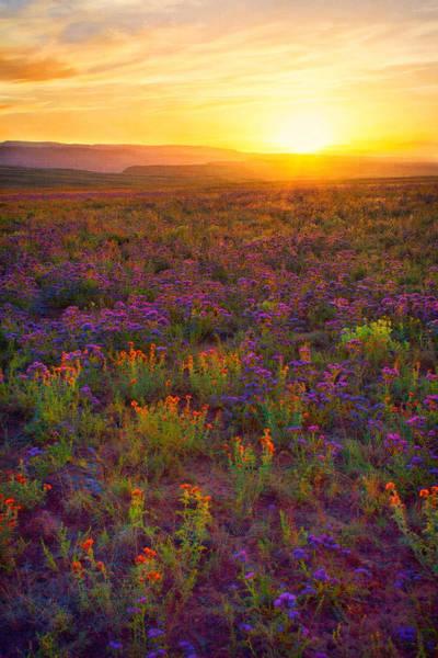 Digital Art - Desert Sunset On Canvas by Rick Wicker