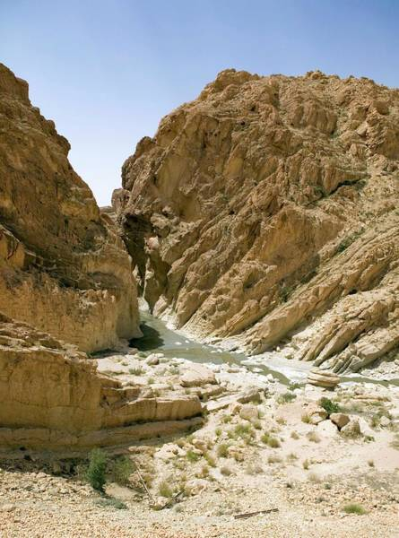 Tunisia Wall Art - Photograph - Desert Valley by Pascal Goetgheluck/science Photo Library