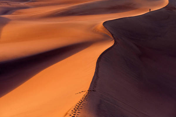 Death Valley Photograph - Desertwalk by Jure Kravanja