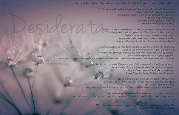 Quotation Photograph - Desiderata - Dandelion Tears by Marianna Mills