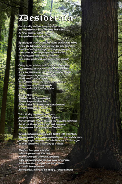 Mixed Media - Desiderata Poem by Christina Rollo