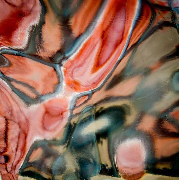 Photograph - Designs In Glass by Jim DeLillo