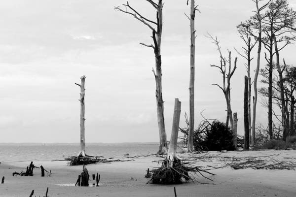 Photograph - Desolation by Karen Saunders