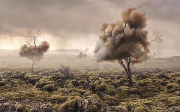 Surreal Landscape Wall Art - Photograph - Desolation by Matthias Bergolth