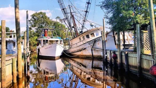 Photograph - Desperado In Bayou La Batre by JC Findley