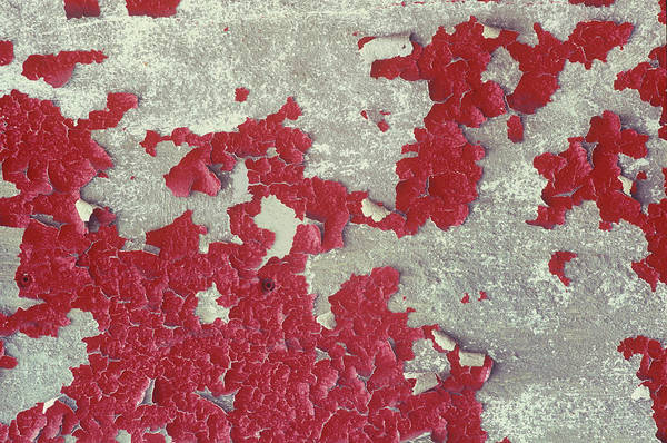 Wall Art - Photograph - Detail Of A Cement Wall With Peeling by Mallorie Ostrowitz
