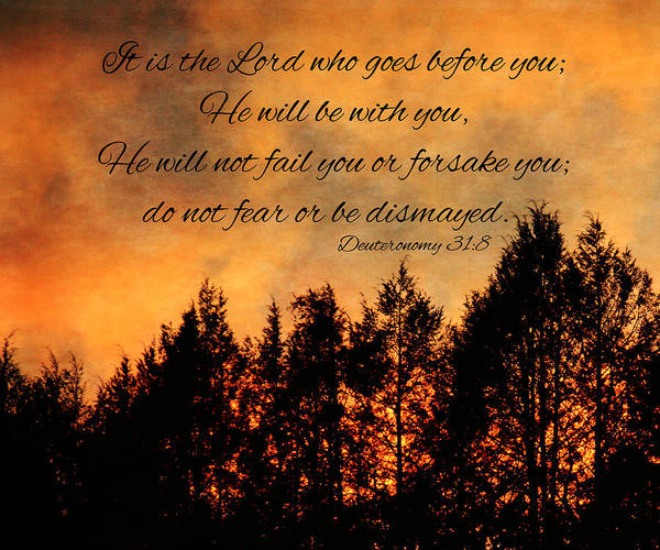 Photograph - Deuteronomy The Lord Goes Before You by Denise Beverly
