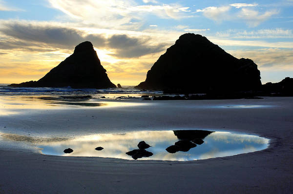Photograph - Devil's Elbow Reflection At Heceta Head by Lara Ellis