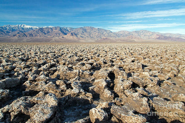 Photograph - Devils Golf Course Death Valley National Park by Fred Stearns
